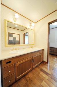 豪華な洗面所1-2の素材 [FYI00443517]