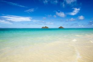 ラニカイビーチ、オアフ島、ハワイ-3の素材 [FYI00443692]
