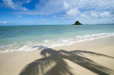 クアロアビーチ、オアフ島、ハワイ-1の素材 [FYI00443700]