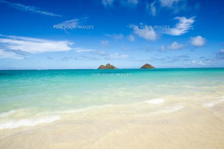 ラニカイビーチ、オアフ島、ハワイ-2の素材 [FYI00443703]