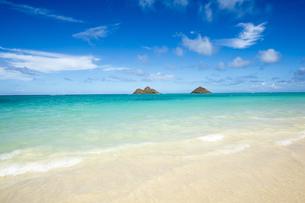 ラニカイビーチ、オアフ島、ハワイ-2の写真素材 [FYI00443703]