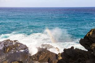 オアフ島マカプウ岬の潮吹き岩と虹-1の素材 [FYI00443724]
