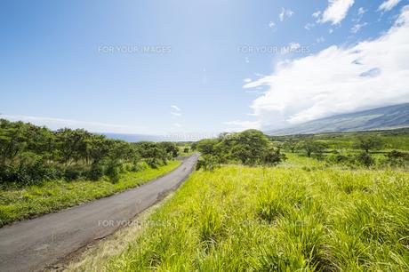 マウイ島ハレアカラ国立公園の東海岸-12の素材 [FYI00443738]