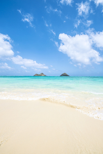 オアフ島ラニカイビーチと亀の形の雲-4の素材 [FYI00443762]