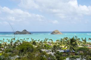 オアフ島の高台から望むラニカイビーチとモクルア島-2の写真素材 [FYI00443764]