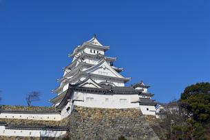 姫路城改修後-10の写真素材 [FYI00443815]