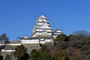 姫路城改修後-11の写真素材 [FYI00443826]