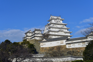 姫路城改修後-3の写真素材 [FYI00443833]