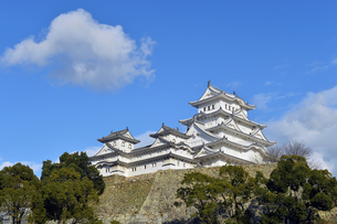 姫路城改修後-6の写真素材 [FYI00443834]