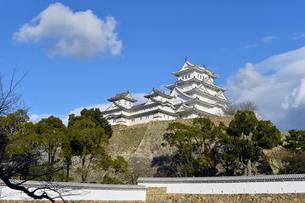 姫路城改修後-7の写真素材 [FYI00443835]