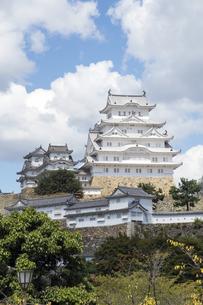 姫路城修理完了-縦位置-1の写真素材 [FYI00443843]