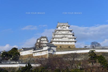 姫路城改修後-2の素材 [FYI00443844]