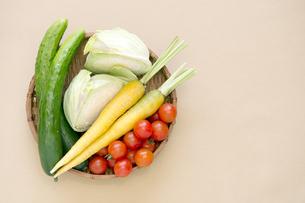 夏野菜、トマト、キューリ、キャベツ、ニンジン-5の素材 [FYI00443907]