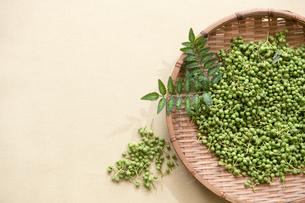 山椒の実と葉、採れたて-2の写真素材 [FYI00443918]