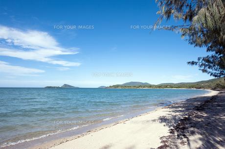 ディンゴビーチ、エアリービーチ、グレートバリアリーフ、クィーンズランド、オーストラリア-1の写真素材 [FYI00443949]