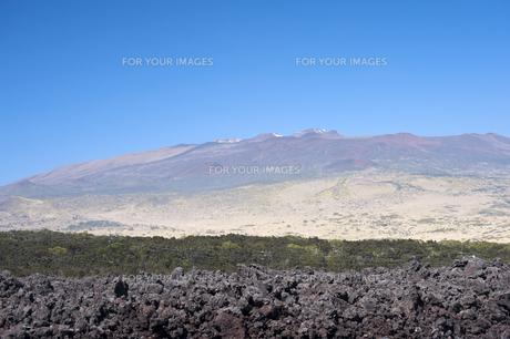 サドルロード ハワイ島-7の素材 [FYI00443976]
