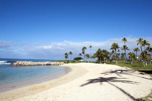 コオリナリゾート、オアフ島、ハワイ-5の写真素材 [FYI00443982]