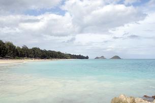 ベローズフィールドビーチ、オアフ島、ハワイ-2の写真素材 [FYI00443989]