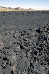 サドルロード ハワイ島-11の素材 [FYI00443996]