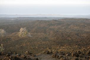 KA'U Scenic Pointの写真素材 [FYI00444006]