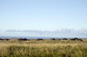 サウスポイントのPali O Kulani-Wind Farm-6の写真素材 [FYI00444007]
