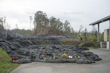 ハワイ島ボルケーノの溶岩流の被害-8の写真素材 [FYI00444014]