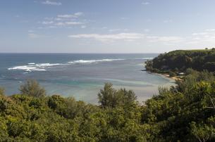 Anini Beach Princevilleの写真素材 [FYI00444054]