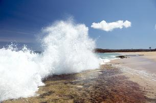 パポハク・ビーチパーク、モロカイ島、ハワイ-4の写真素材 [FYI00444092]