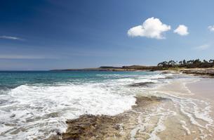 ポハク・マウリウリ・ビーチ、モロカイ島、ハワイ-3の写真素材 [FYI00444108]