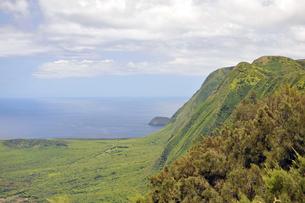 カラウパパ展望台、モロカイ島、ハワイ-5の写真素材 [FYI00444110]
