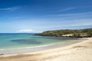 カプカヘフ・ビーチ、モロカイ島、ハワイ-1の写真素材 [FYI00444111]