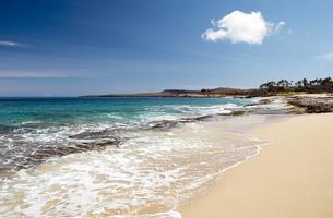 ポハク・マウリウリ・ビーチ、モロカイ島、ハワイ-1の写真素材 [FYI00444115]