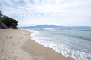 Lopa Beachの素材 [FYI00444151]