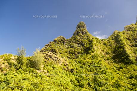 マクアマウンテン、カウアイ島、ハワイ-1の写真素材 [FYI00444164]