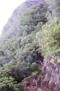 カララウトレイル、カウアイ島、ハワイ-2の写真素材 [FYI00444166]