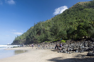 ハナカピアイ・ビーチ、カウアイ島、ハワイ-4の写真素材 [FYI00444171]
