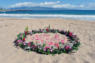 フレミングビーチとウエディングフラワー、マウイ島、ハワイ-2の素材 [FYI00444177]
