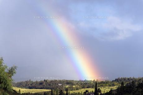マウイ島に掛かる虹、ハワイ-1の素材 [FYI00444184]