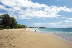 カアナパリビーチ、マウイ島、ハワイ-1の素材 [FYI00444215]