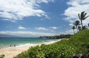 マケナビーチ、マウイ島、ハワイ-2の写真素材 [FYI00444223]
