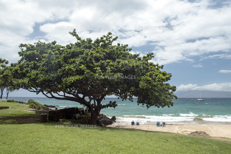 マケナビーチ、マウイ島、ハワイ-3の素材 [FYI00444230]