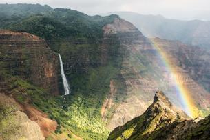 ワイメアキャニオンに掛かる虹、カウアイ島、ハワイ-2の素材 [FYI00444283]