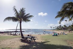 ポイプビーチパーク、カウアイ島、ハワイ-2の写真素材 [FYI00444292]