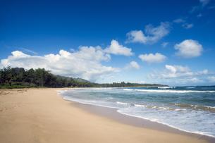 ケアリアビーチ、カウアイ島、ハワイ-1の素材 [FYI00444308]