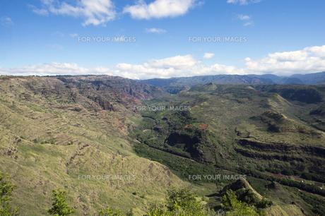 ハナペペヴァレー展望台、カウアイ島、ハワイの写真素材 [FYI00444314]