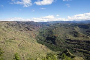 ハナペペヴァレー展望台、カウアイ島、ハワイの素材 [FYI00444314]