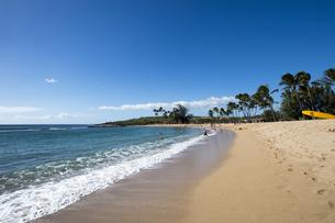 ソルトポンドビーチパーク、カウアイ島、ハワイ-2の素材 [FYI00444336]