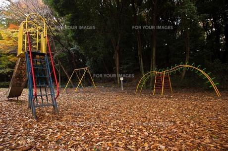 leaves_17の写真素材 [FYI00444516]