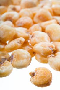nuts(jiantcorns)_02の写真素材 [FYI00445000]