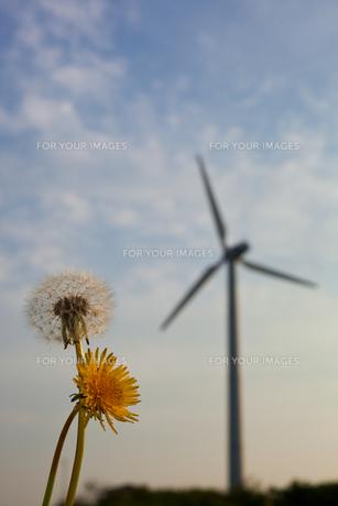 scene[wind_turbine]_088の素材 [FYI00445806]